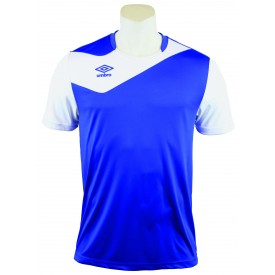 Maillot Division 1
