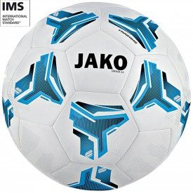 Ballon d'entrainement Striker MS 2.0 Jako
