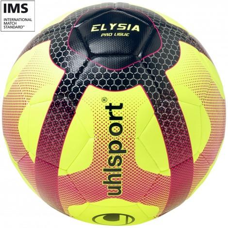 Lot de 50 ballons Pro Ligue 1 Elysia