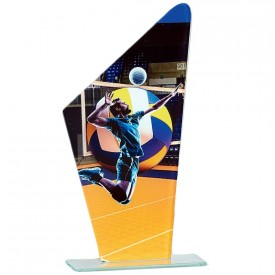 Trophée Volley-ball 66119 - France Sport F_66119