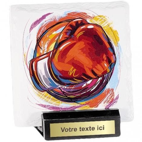 Trophée Boxe 45107 France Sport
