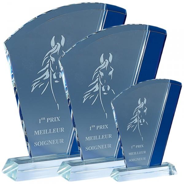 Trophée Verre France Sport