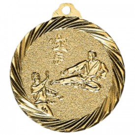Médaille Karaté Or 32 mm - France Sport F_NX12D