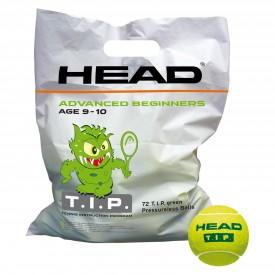 Sachet de 72 balles Head T.I.P Green - Head 578280