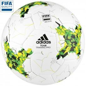 Ballon d'entrainement Team Pro (par 16)